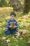 Het spelen van de jongen in de herfstbos Royalty-vrije Stock Foto's