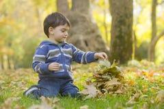 Het spelen van de jongen met de herfstbladeren Stock Foto