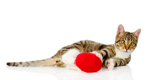 Het spelen van de kat met een bal Op witte achtergrond Stock Foto's