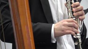 Het spelen van de mens fluit stock footage