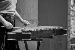 Het spelen van de mens xylofoon royalty-vrije stock fotografie