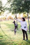 Het spelen van de vrouw met haar hond Royalty-vrije Stock Fotografie