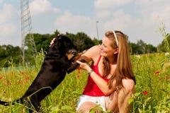 Het spelen van de vrouw met haar hond in een weide Stock Afbeeldingen