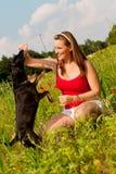 Het spelen van de vrouw met haar hond in een weide Stock Foto's