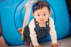 Het spelen van het jonge geitje speelgoed Stock Foto's