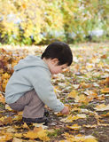 Het spelen van het kind met bladeren Royalty-vrije Stock Foto