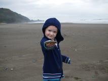 Het spelen van het kind op strand Stock Fotografie