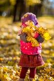 Het spelen van het meisje met de herfstbladeren Royalty-vrije Stock Afbeeldingen