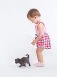 Het spelen van het meisje met een katje Royalty-vrije Stock Fotografie