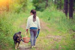 Het spelen van het meisje met hond Stock Fotografie