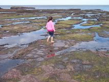 Het spelen van het meisje in rotspools Stock Afbeeldingen