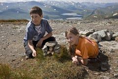 Het spelen van jonge geitjes Stock Foto