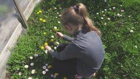 Het spelen van het meisje met bloemen stock video