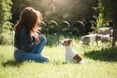 Het spelen van het meisje met een hond Jack Russell Terrier in aard De zomer royalty-vrije stock fotografie