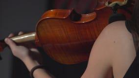 Het spelen van het meisje viool stock video