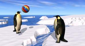 Het Spelen van pinguïnen Stock Foto's