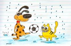 Het spelvoetbal van de hond en van de kat Stock Foto