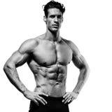 Het spier en geschikte jonge bodybuilder stellen toont de kern aan stock afbeeldingen