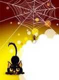 Het spinneweb van Halloween en zwarte kattenachtergrond. Stock Afbeelding