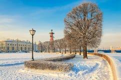 Het Spit van Vasilievsky-eiland bij een wazige ijzige de winterdag Stock Afbeeldingen