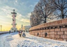 Het Spit van Vasilievsky-eiland bij een wazige ijzige de winterdag Stock Afbeelding