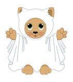 Het spookkat van Halloween Stock Afbeeldingen