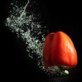 Het spoor van de paprika en van de bel Royalty-vrije Stock Foto's