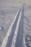 Het spoor van de ski Stock Fotografie