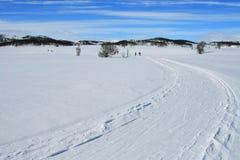 Het spoor van de ski de bergen Stock Afbeeldingen