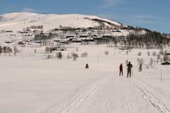 Het spoor van de ski de bergen Royalty-vrije Stock Afbeelding
