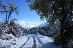 Het spoor van de sneeuw Stock Foto