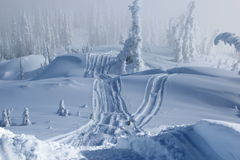 Het spoor van de sneeuwscooter Royalty-vrije Stock Foto's