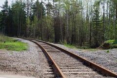 Het spoor van de spoorweg in het hout Royalty-vrije Stock Fotografie