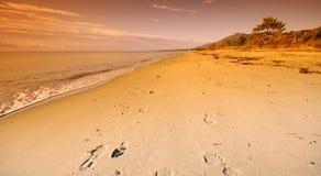 Het spoor van de voet in Mediterraan strand Royalty-vrije Stock Afbeeldingen