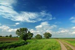 Het spoor van het landbouwbedrijf Stock Fotografie