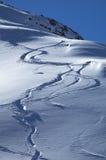 Het spoor van Snowboards Royalty-vrije Stock Afbeeldingen