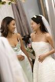 Het spreken van de bruid en van het bruidsmeisje. Royalty-vrije Stock Afbeelding