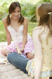 Het Spreken van de Meisjes van de picknick Stock Foto's