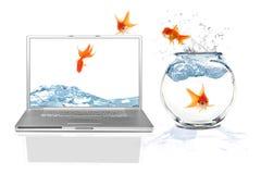 Het springen in de Online Virtuele Werkelijkheid van Internet stock afbeeldingen