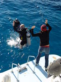 Het springen in het blauwe water Royalty-vrije Stock Afbeeldingen