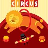 Het springen leeuw in circus Dierlijke trainer en leeuw Stock Afbeeldingen