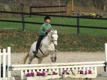 Het Springen van het meisje Paard royalty-vrije stock afbeelding