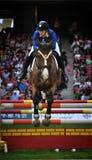 Het Springen van het paard Stock Fotografie