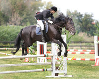 Het springen van het paard en van de jockey royalty-vrije stock foto