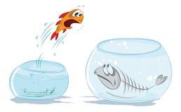 Het springen vissen Stock Foto's