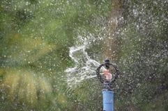 Het sproeierplastiek is water gegeven boomachtergrond vertroebelde bladeren royalty-vrije stock fotografie