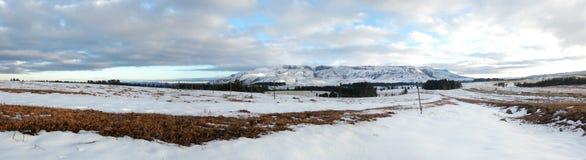Het sprookjesland van de sneeuw Stock Fotografie