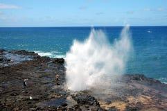 Het spuiten Hoorn, Kauai, Hawaï Royalty-vrije Stock Afbeelding