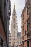 Het Stadhuis van de Stad van Brussel stock foto