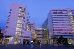 Het Stadhuis van Den Haag Stock Afbeeldingen